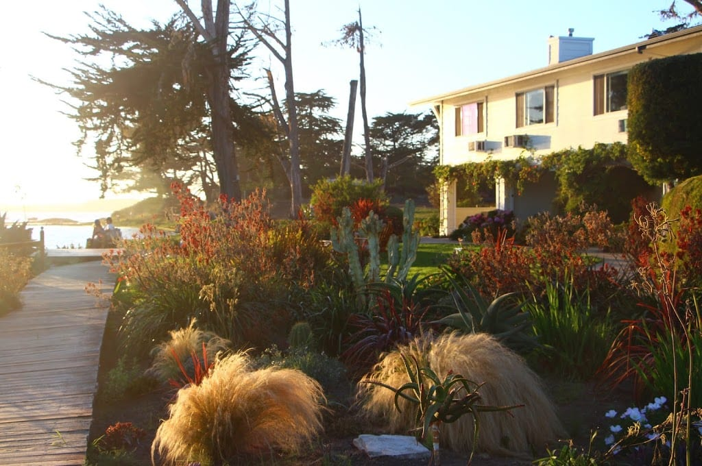 Gardens and boardwalk at Back Bay Inn
