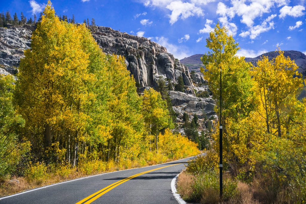 Fall colors near Sonora Pass