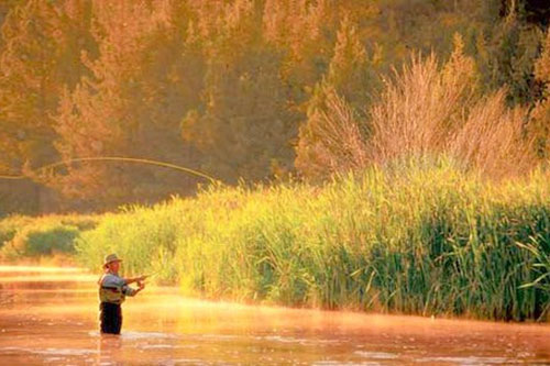 Fly fishing on the Fall River