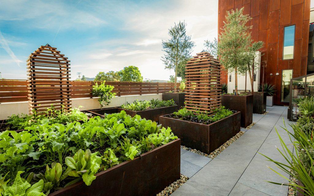 Hotel Cerro edible gardens