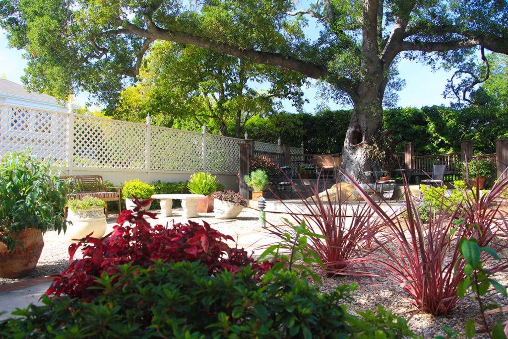 Backyard garden at Cheshire Cat Inn