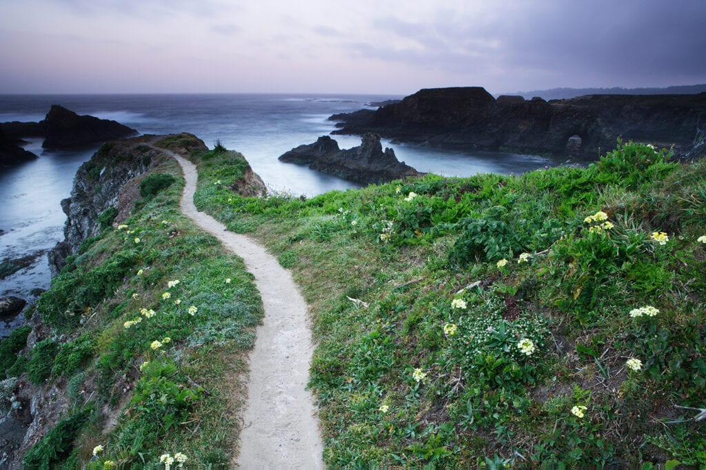Mendocino Headlands State beach