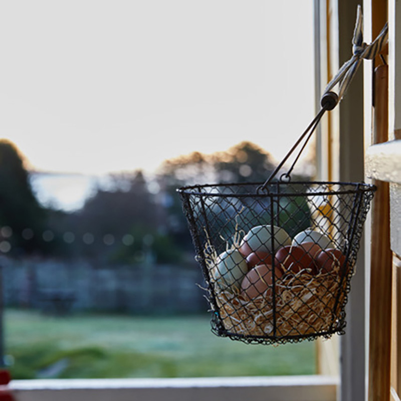 Farm-fresh eggs delivered to the door at Mar Vista Farm + Cottages