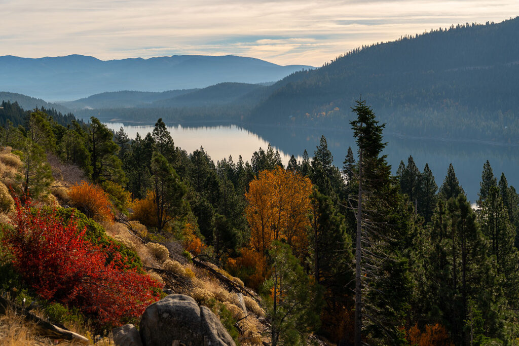 Fall color above Donner Lake in Truckee